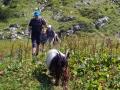 2017-08-24 12 Hüttenwanderung Allgäu 2017